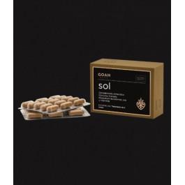 GOAH CLINIC SOL 60 CAPS